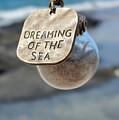 Dreams by Pamela Walton