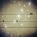 Dreams Reborn by Marianna Mills