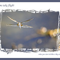 Dreams Take Flight Poster Or Card by Carol Groenen