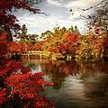 Dreamy Autumn Impressionism by Isabella Howard