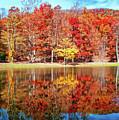 Dreamy Autumn Reflections by Lynn Bauer