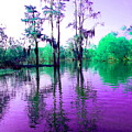 Dreamy Bayou Sorrel by Gina Welch