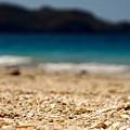Dreamy Shell Beach by Kim Grosz