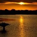Dreamy Sunset by Jennifer A Garcia