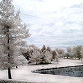 Dreamy Surreal Infrared Pond Landscape Nature Scene  by Kathy Fornal