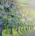 Dreamy Trees by Lian Zhen