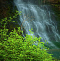 Dreamy Waterfalls by Iris Greenwell