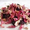Dried Organic Carnation Petals by Sal Collins
