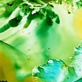 Drifting Seaweed by Susan Kubes
