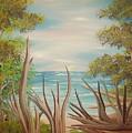 Driftwood Beach by Joshua Bales