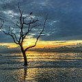 Driftwood Beach Sunrise Jekyll Island Georgia by Kerri Farley