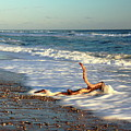 Driftwood In The Surf by Roupen  Baker
