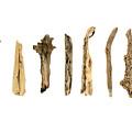 Driftwood by Jennifer Booher