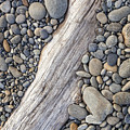 Driftwood On Rock Covered Beach by Bryan Mullennix