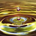 Drip Drop by Arnie Goldstein