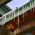 Dripping Ice by Deborah Napelitano