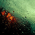 Droplets IIi by Grebo Gray