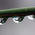 Droplets by Mary Haber