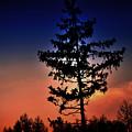 Colorful Sunset by Damijana Cermelj