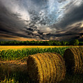 Drought by Phil Koch