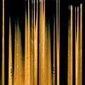 Drumstick by Gerard Yates