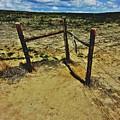 Dry Desert Fenceline by Amanda Smith