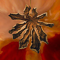 Dry Leaf Collection Digital 1 by Totto Ponce