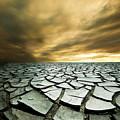 Dry Lowlands by Zarija Pavikevik