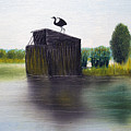 Duck Blind by Brian Wallace