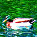 Duck by Everett White