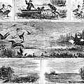 Duck Hunting, 1868 by Granger