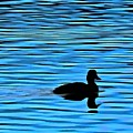 Duck On Blue Waters by Patricia Strand