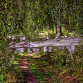 Duck On Path #g7 by Leif Sohlman