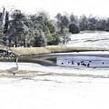 Broadmoor Winter Swim by Nancy Forehand