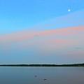 Ducks Below The Moon  by Lyle Crump