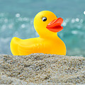 Ducky's Fun Day  At The Beach by Garland Johnson