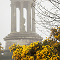 Dugald Stewart Monument by Sophie McAulay