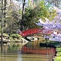 Duke Garden Spring Bridge by Scotty Alston