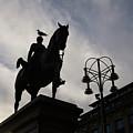 Duke Of Wellington Statue  by Yesim Tetik