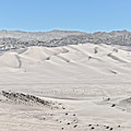 Dumont Dunes 7 by Jim Thompson