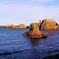 Dunbar Coast by Nik Watt