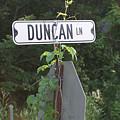 Duncan Ln by Bjorn Sjogren