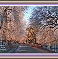 Dundalk Avenue In Winter. L A With Alt. Decorative Printed Frame. by Gert J Rheeders