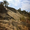 Dune And Blue Sky by Michelle Calkins