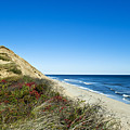 Dune Cliffs And Beach by John Greim