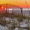 Dune Fence by Russell G Hunt