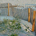 Dune Fence by Suzanne Gaff