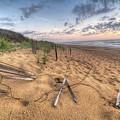 Dune Fencing Down by Robert Huber