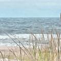 Dune Grass by Helene Guertin