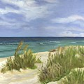 Dune Grasses by Deborah Butts